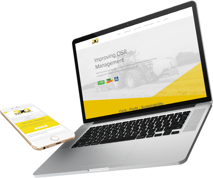 Responsive website design for international client